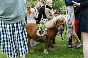 Real Wedding ~ Sophie & Todd ~ Pony